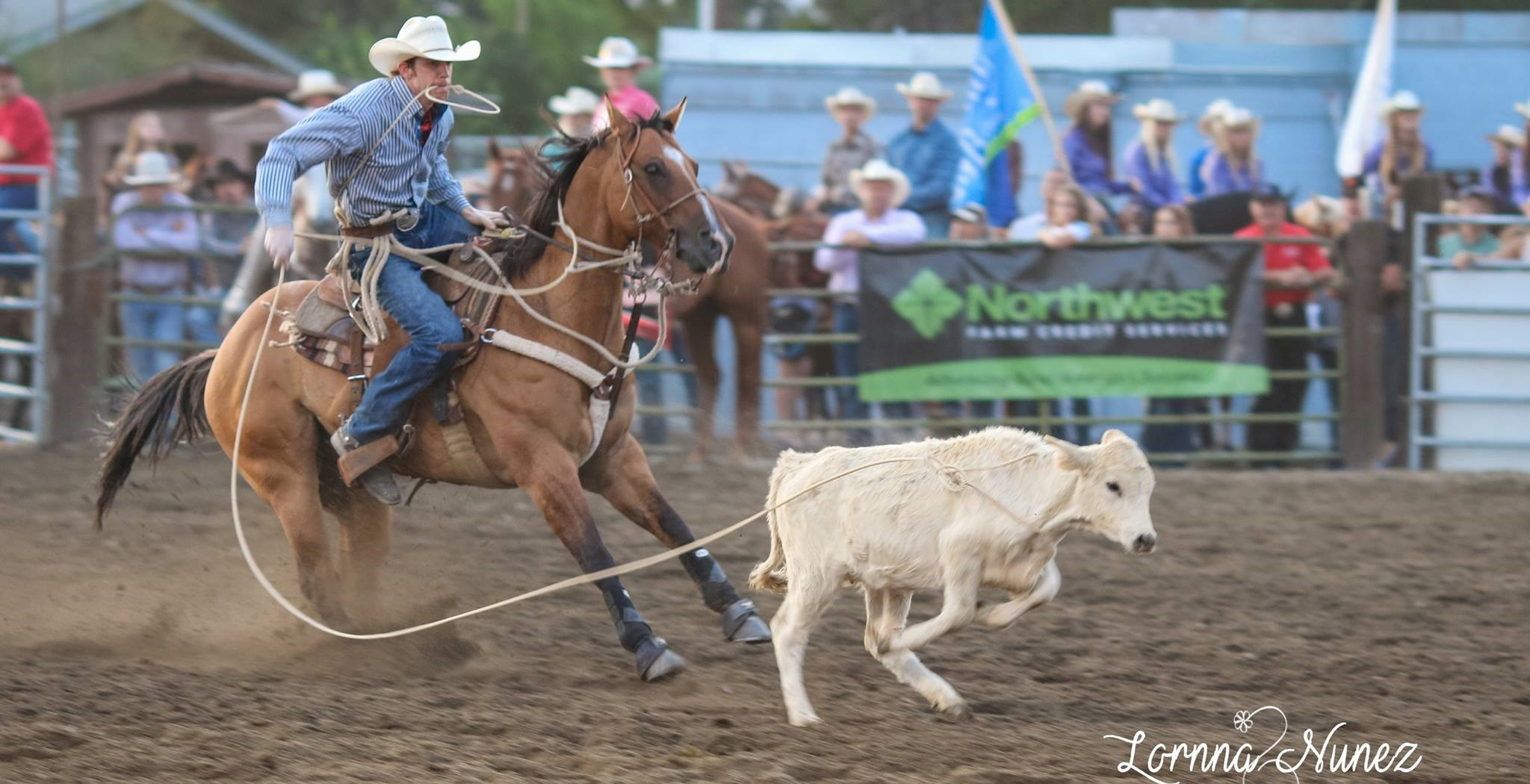 Yakima Valley Fair and Rodeo